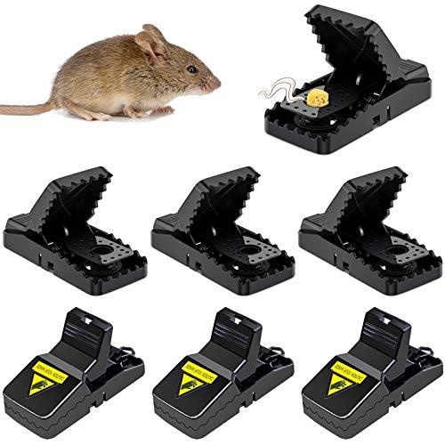 kytuwy Mausefalle Schlagfalle - 6 Stück Profi Mäusefalle Leistungsstark Rattenfallen Kunststoff Einfach Zu Bedienen, Hygienisch, Effizient und Wiederverwendbar in Haus und Garten.