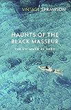 Haunts of the Black Masseur: The Swimmer as Hero (Vintage Classics) - Charles Sprawson