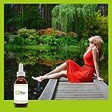 👍 ALCOOL DANS LES FLEURS DE BACH: Les fleurs de Bach ont toujours été conservées grâce à de l'alcool. Ca fait partie de la méthode originale du Dr Bach. Cette méthode est encore appliquée par 99% de fabricants de fleurs de Bach. Le Dr Bach recommande...
