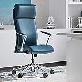 Modern Ergonomic Draper Genuine Leather Executive Chair with Aluminum Frame - Dark Teal