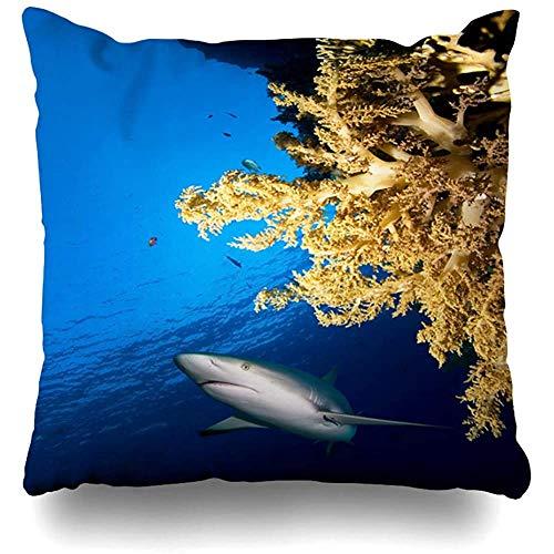Kussensloop Blauw Aquarium Koraalrif Einde Haai Activiteit Natuur Aquatische Caraïbische Thuis Decor Kussensloop Kussensloop