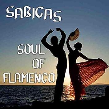 Soul of Flamenco