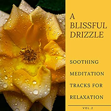 A Blissful Drizzle - Soothing Meditation Tracks For Relaxation, Vol.2