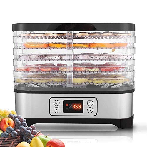 Buy Stainless Steel 5-Tray Electric Food Dehydrator with Temperature Controller Professional & Timer Digital Multi-Tier Food Preserver Fruit-Meat Dryer, BPA-Free (5 Tray/LCD)