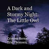 A Dark and Stormy Night: The Little Owl