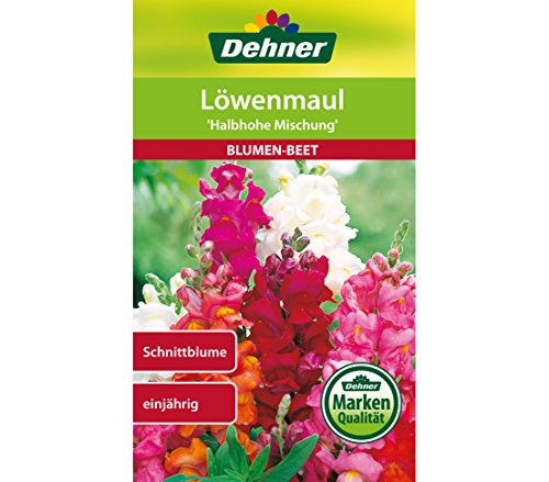 Dehner Blumen-Saatgut, Löwenmaul,