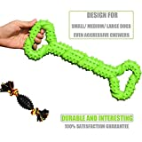 Borangs Dog Chew Bone Toys Durable Tough Rubber Non-Toxic Tooth...