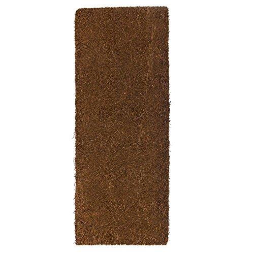Xaxim Baumfarnplatte 50 x 20 x 2 cm, Xaxim Rückwand Terrariumrückwand