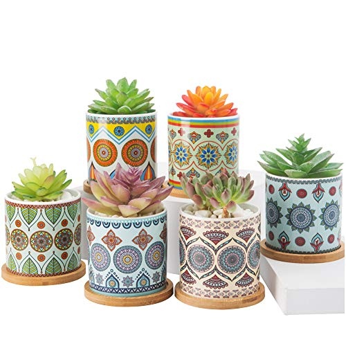 Succulent Plant Pots - 3.2 inch Ceramic Succulent Planter - Cylinder Flower pots for Cactus with Drainage Hole and Bamboo Tray, 6 Pack