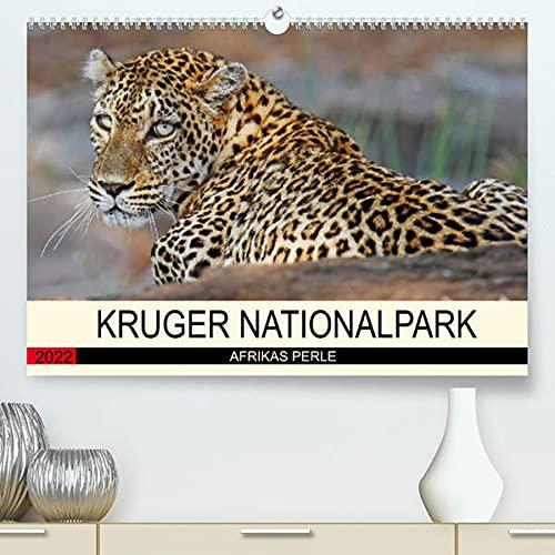 KRUGER NATIONALPARK Afrikas Perle (Premium, hochwertiger DIN A2 Wandkalender 2022, Kunstdruck in Hochglanz): Faszinierende Tiere und Natur (Monatskalender, 14 Seiten )