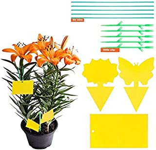 Rayking Sided Yellow Sticky Traps Fruit Fly Sticky Pest Control Traps Bug Catcher for Mosquitos Fungus Gnats, Flying Aphi...