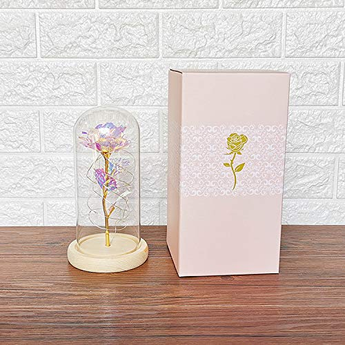 Chris.W Beauty and The Beast Rose Enchanted Rose with Led String Light in Glass Dome, Artificial Flower Gifts for Valentine's Day Mother's Day Women Her Girlfriend Female Wedding Anniversary Birthday Silk Flower Arrangements