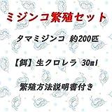 【ミジンコ繁殖セット】タマミジンコ 約200匹+スーパー生クロレラ 30ml+繁殖方法説明書付き