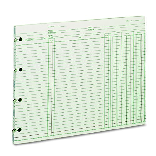 Wilson Jones GN2D Accounting, 9-1/4 x 11-7/8 (Pack of 100 Loose Sheets)