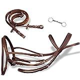 vidaXL Briglie complete in pelle redini e morso marrone per cavallo equitazione