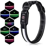 IOKHEIRA LED Flashing Dog Collar, 7 Lighting Modes USB Rechargeable Adjustable Dog Collar, Soft Polyester & Mesh Glowing Dog Collar for Night Safety and Visible (M)