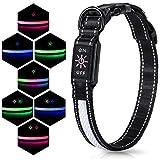 Iokheira Collar Perro Intermitente LED, Collar de Perro Ajustable Recargable USB de 7 Modos de iluminación, Collar de Perro Brillante de Malla y poliéster Suave para Seguridad Nocturna y Visible