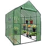 BBBuy Greenhouse