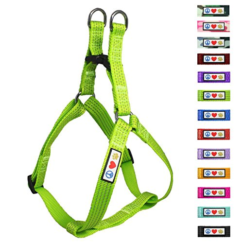 PAWTITAS verstellbares, Reflektierendes Step-in-Softgeschirr für Welpen | Hundegeschirr einstellbar ideal für sportliche Aktivitäten | Mittelgroßer Hund - Grün Hundegeschirr