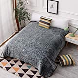 Hiyoko Throw Velvet Blanket, Cloudy Dream Warm Full Double Queen Size for Bed, Sofa, and Couch. Less Fuzz, Almost Lints-Free, No Shedding Gray, jcpc895