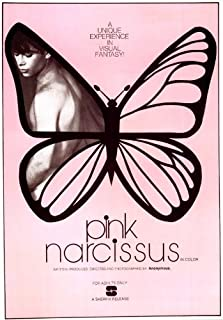 Movie Posters Pink Narcissus - 11 x 17