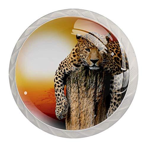 Haminaya Möbelknöpfe Sonnenuntergang Leopard Kinderzimmer Kinder Möbelgriff Kristall Möbelknöpfe Schrankgriffe Türknöpfe Schrankknöpfe Griff Knopf 4 Stück 3.5x2.8cm