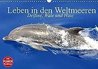 Leben in den Weltmeeren. Delfine, Wale und Haie (Wandkalender 2022 DIN A3 quer): Gleiten und Leben in den Ozeanen der Welt (Geburtstagskalender, 14 Seiten )