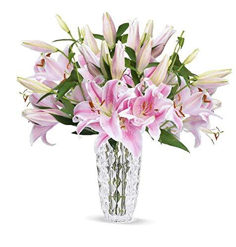 Blumenstrauß 12 pinke Lilien, Lilien mit exotischem Duft, 2-3 Blüten pro Stiel, bis zu 40 Blüten, Schnittblumen, Dschungelpflanze, Blumenversand, 7-Tage-Frischegarantie, versandkostenfrei bestellen