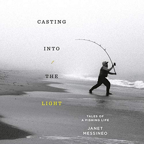 Casting into the Light audiobook cover art