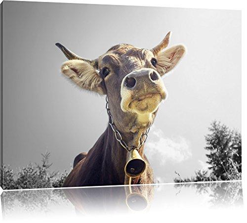 Pixxprint Lustiges Portrait Einer Kuh als Leinwandbild | Größe: 80x60 cm | Wandbild| Kunstdruck | fertig bespannt
