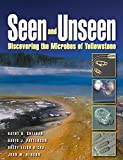 Seen and Unseen: Discovering the Microbes of Yellowstone