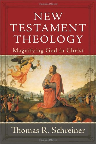Image of New Testament Theology: Magnifying God in Christ
