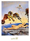1art1 Salvador Dali - Dream Caused by The Flight of a Bee,