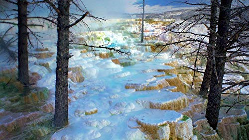zhangshifa Jigsaws Puzzles 1000 Pieces,Terrazas Minerva De Mammoth Hot Springsrompecabezas De Paisajes Naturales,Juego De Rompecabezas para Niños Adultos-75 * 50Cm