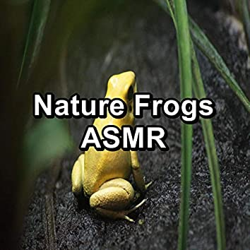 Nature Frogs ASMR
