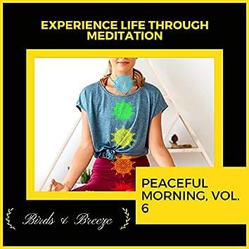 Experience Life Through Meditation - Peaceful Morning, Vol. 6