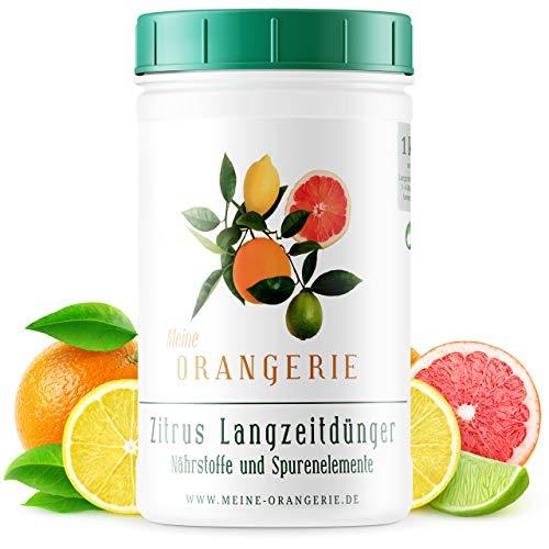 Meine Orangerie - Langzeit-Zitrusdünger [1kg] - Profi Zitruspflanzendünger - Gleichmäßige Langzeit-Wirkung für 6 Monate - Langzeit Zitrusdünger für Citruspflanzen und mediterrane Pflanzen