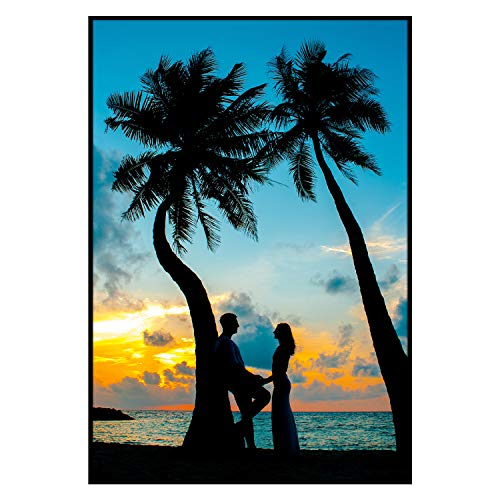 Golden State Art, Aluminum Black Photo Frame with Plexi-Glass, Metal Wall Poster Frame Collection (13x19, 1-Pack)