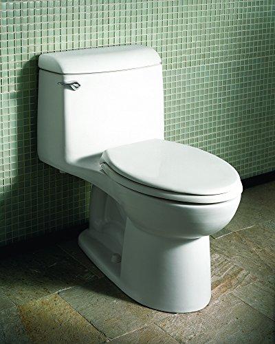 best toilet flush system