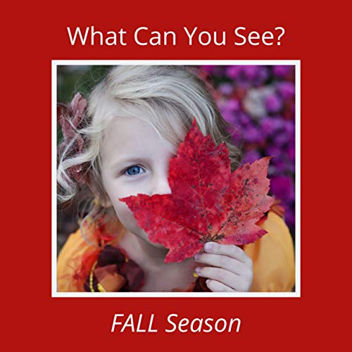 What Can You See? Fall Season: A Fun Educational Picture Book for 2-6 Year Old Kids (What Can I See 3) (English Edition)