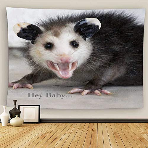 Uoopati Tapestry Wall Hanging Funny Bachelor Pad Opossum Wall Art Tapestries Tapestry for Bedroom Room Decor Picnic Mat Beach Bed Cover 28'x37'