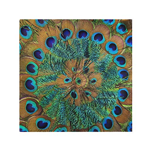 Reusable Dinner Cloth Napkins Table 20x20 Inch Close Up Of Circular Peacock Feather Washable Kitchen Easy to Clean