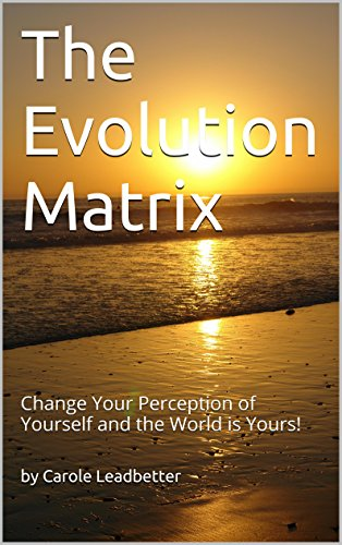 The Evolution Matrix: Change Your Perception of Yourself and the World is Yours! (One Book 1) (English Edition)