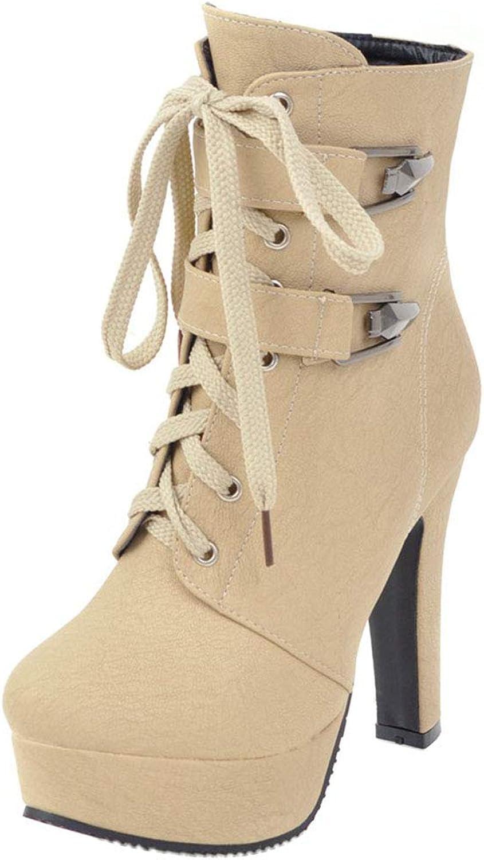 AicciAizzi Women Thick High Heels Boots Zipper
