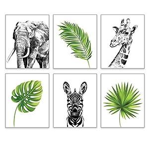 Realistic Safari Animals Decor by KIU Designs – Set of 6 Art Prints of 8×10 Inch | Baby Room Decor | Jungle Nursery Decor | Safari Decor | Jungle Nursery Decor Wall Art Prints | Jungle Theme Wall Art