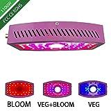 Luz de planta LED de 1000 W,luz de relleno para interior de siembra de vegetales y frutas,foco de COB de doble perilla,3 modos de iluminación,luz de relleno de planta creativa para el hogar,Púrpura