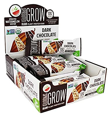 Go Raw - Organic Sprouted Plant Protein Bars Dark Chocolate