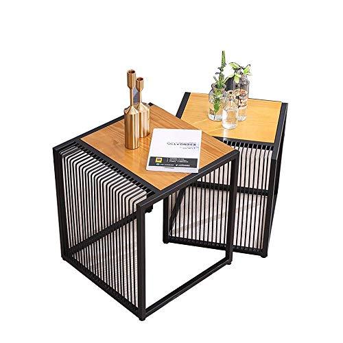 Carl Artbay Home&Selected Furniture/Set van 2 salontafels salontafelset eind bijzettafels hout met metalen poten (kleur: A)