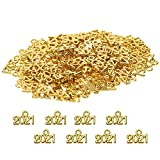 Tupalizy 9x13mm Mini Alloy Year 2021 Charm for Graduation Tassel Necklace Pendant Bracelet Earrings Keychain Jewelry Findings Making Accessory DIY Crafting Wedding Decor, 120PCS (Gold)