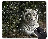 Yanteng Alfombrilla de ratón Tigre Blanco, Alfombrillas de ratón Tigre con Bordes cosidos